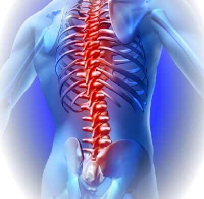 Spine back pain