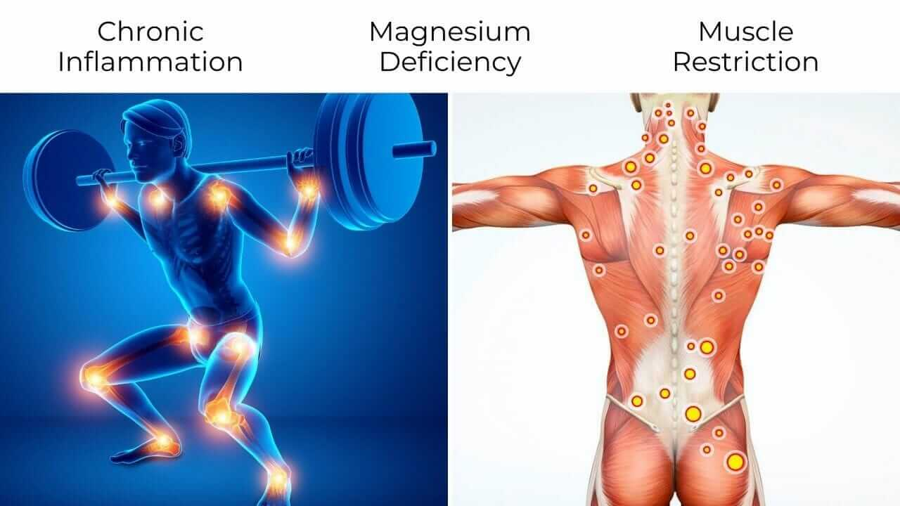 Illustration of weight training joint inflammation and knotted muscles